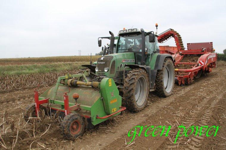 patates 2015 chantier 18