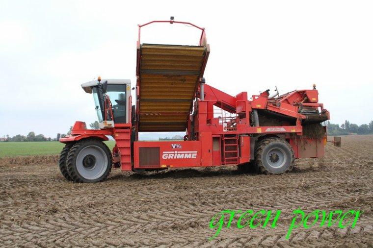 patates 2015 chantier 19