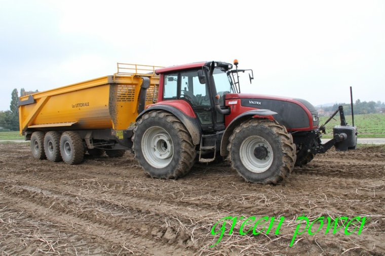 patates 2015 chantier 20