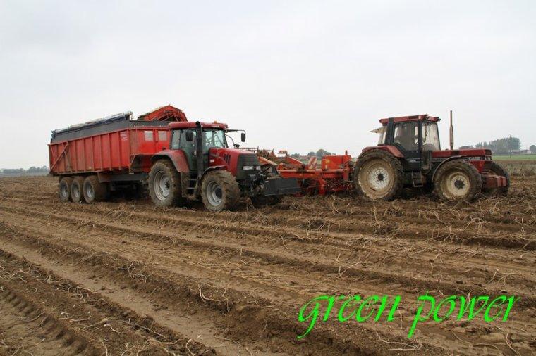 patates 2015 chantier 21