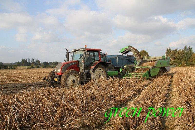 patates 2015 chantier 24