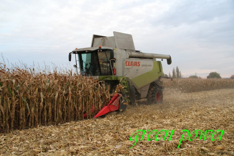 mais grain 2015 chantier 6