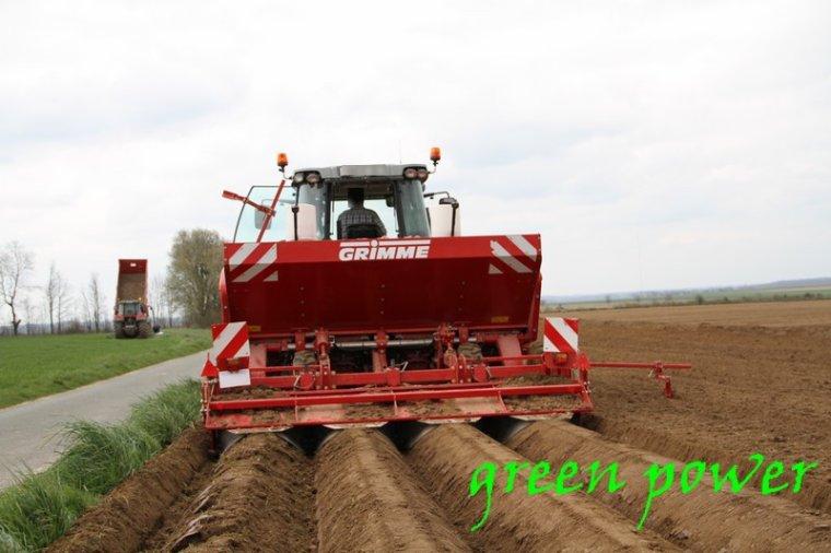 plantation de patates 2016 chantier 2