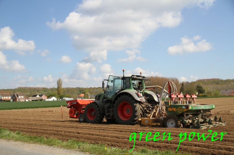 plantation de patates 2016 chantier 10