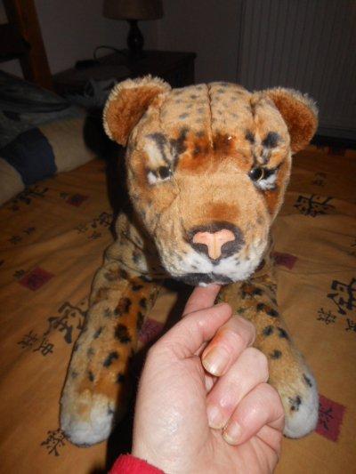 panthére ou léopard