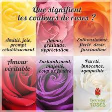 Que Signifie les Couleurs des roses?