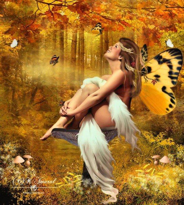 *** fée des papillons ***