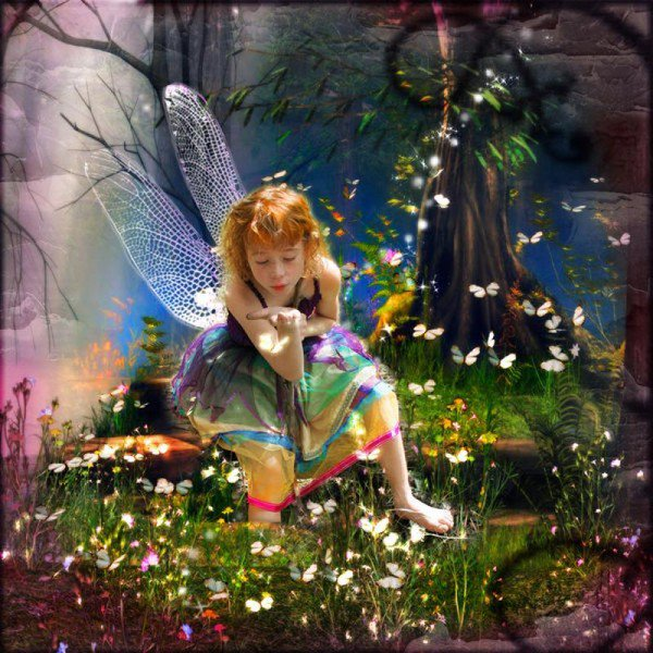 *** petite fée des papillons ***