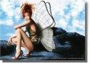 Photo de quedespapillons