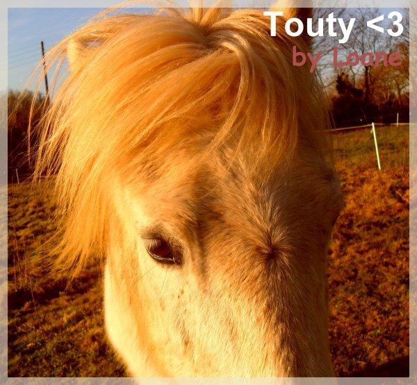 Touty ♥