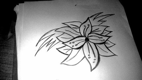 petite fleur ♡