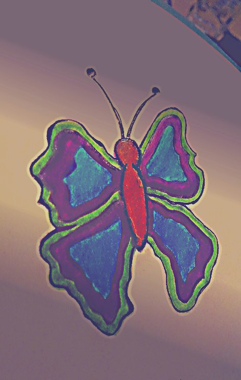 petit papillon ⭐