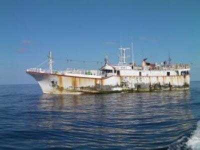 Madagascar : un palangrier interpellé avec 3,2 tonnes d'ailerons de requins