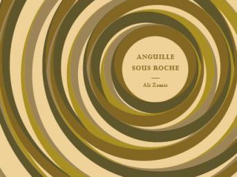 Invitation à la présentation du livre : Anguille sous roche par Ali ZAMIR