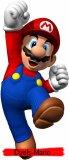 Photo de Duels-Mario