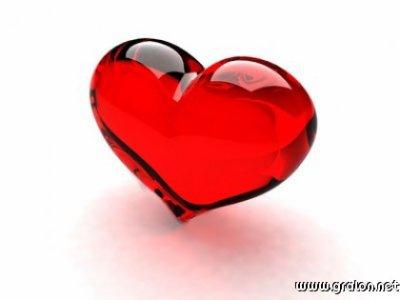 Nos histoires d'amour