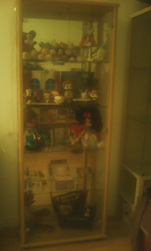 Ma collection Disney : ma vitrine Disney !