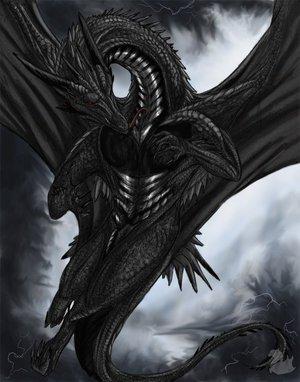 Chef (dragon des thénèbres)