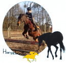 Photo de horseloustic