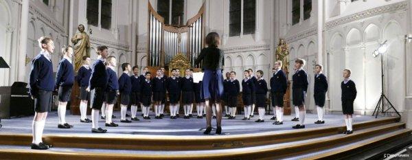 Les Petits Chanteurs à la Croix de Bois - Concert à  Marcq en Baroeul  le 21  janvier 2016