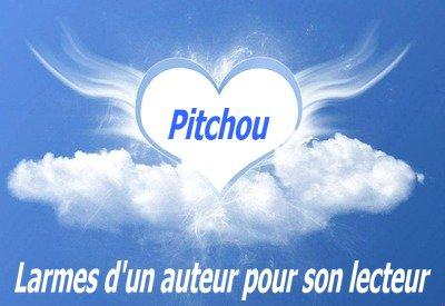 Hommage à un de mes lecteurs : Pitchou25100