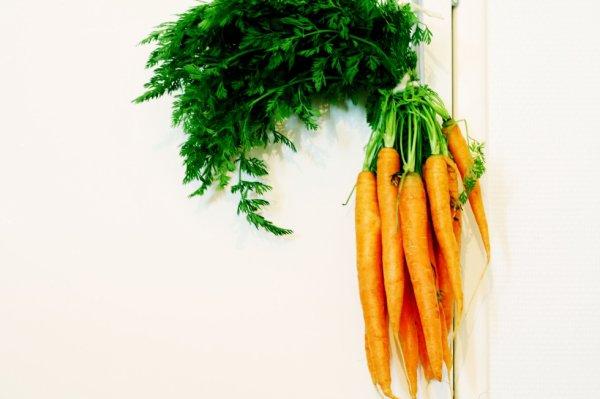 le concept de carotte
