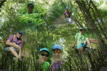 Randonné dans la forêt du (78) avec Marc !! - Le samedi 27 juin 2015