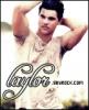 Laylor