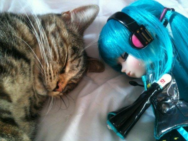 Miku et Fifi (<- le chat) *-*