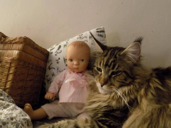 Nelson il adore les poupées