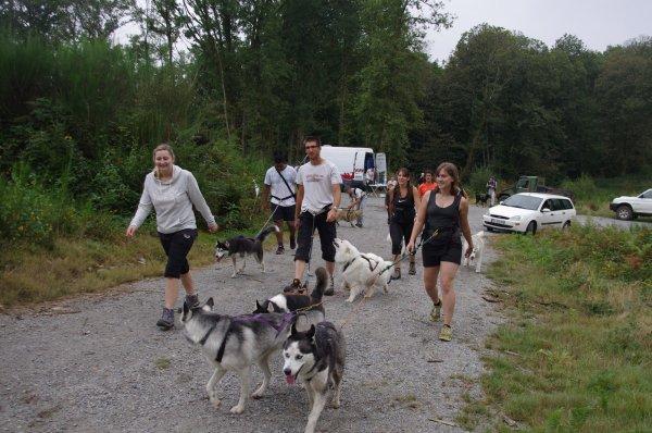 Cani-randonnée de Saint Pardoux les 20 et 21 septembre 2014