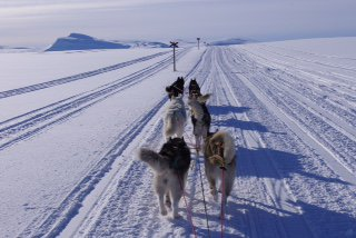 Randonnée en Laponie suédoise