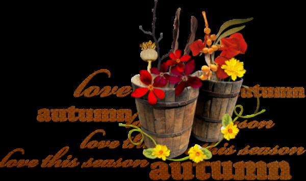 BON MOIS D'OCTOBRE MES CHERS AMIS PORTEZ VOUS BIEN ET PASSER UNE AGREABLE SOIREE SANS OUBLIER UN BON DEBUT DE SEMAINE MERCI POUR VOTRE FIDELITE GOD BLESS YOU MY DEAR MICHAEL GROS BISOUS YOUR FRIEND KIMO