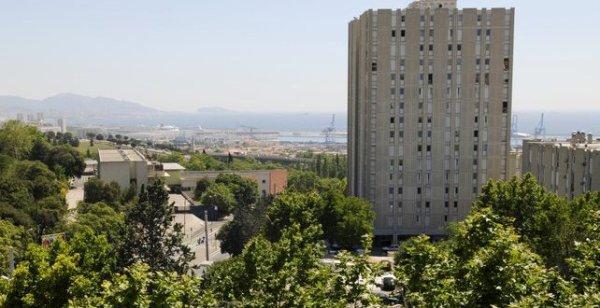 Un chien pendu, égorgé, brûlé au nom de l'Islam à Marseille
