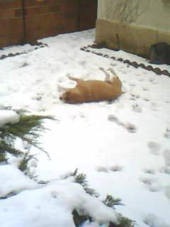 j'adore la neige!!!!!