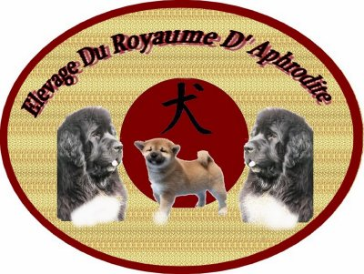 :D......presentation  De L'élevage ... :D