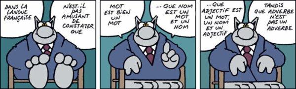 L'art de jouer avec la langue française... avec Yves Duteil
