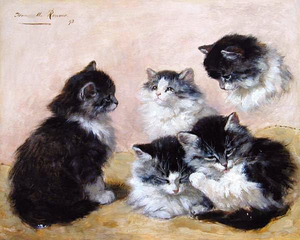 Le Chat à l'honneur