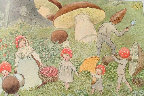 L'automne c'est aussi la saison des champignons...