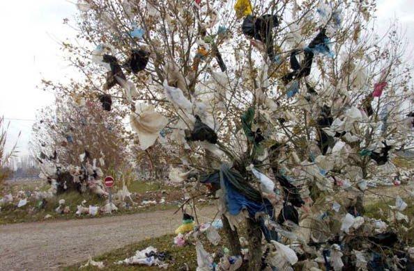 3 juillet = Journée Mondiale sans sacs plastiques