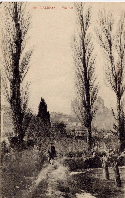 """Extrait de ma collection de cartes postales anciennes """"Nature"""" Parcs"""