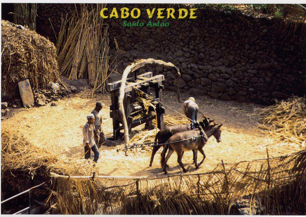 "Extrait de ma collection de cartes postales   ""Ethnologie""  Vie rurale"