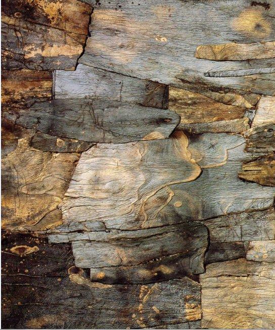 L'art d'utiliser les feuilles d'agave    -    Jean Dubuffet   (1901-1985)