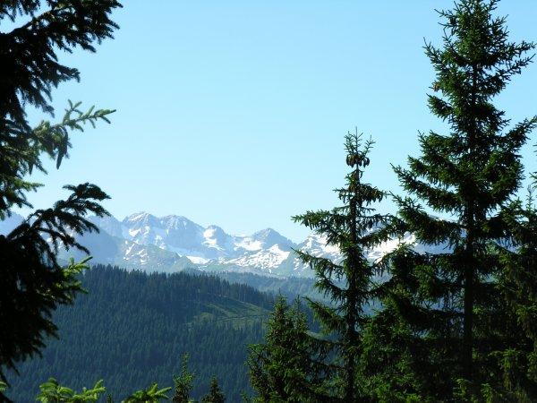 Quelques photos prises par mon Homme - 4 jours dans le Chablais (Hte Savoie) W-E 14 juillet (suite et fin)