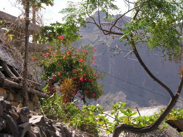 Quelques photos prises lors d'un merveilleux séjour de randonnée au Cap Vert -  1