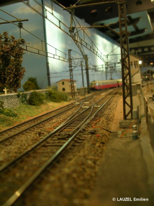 Exposition de Bayonne les 23 et 24 Mars 2013