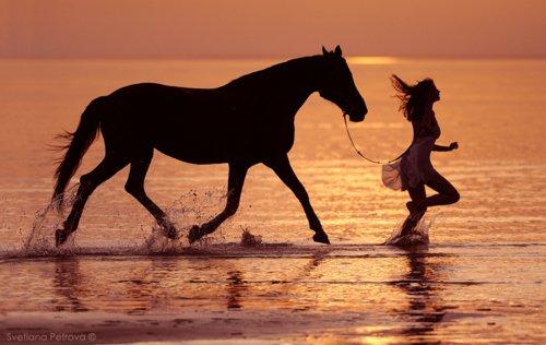 On ne renonce jamais aux chevaux.