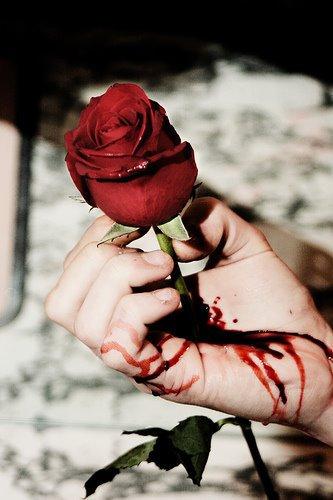 Le caveau d'une rose : dernière partie