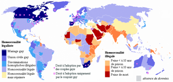 L' homosexualité dans le monde ( 2007 )