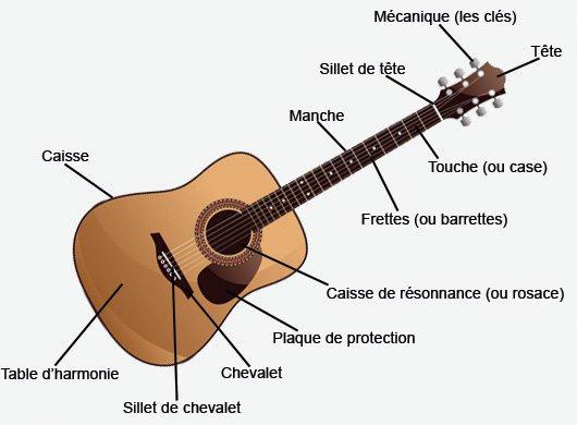 Anatomie de la Guitare Acoustique
